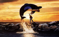 FREE WILLY MOVIE RARE Film Cell Lot of 15  FREE SHIPPING