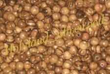600 ~ TOP QUALITY Olive Wood 6mm Round Beads Polished Rosary Jewelry Bethlehem