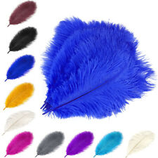 10/25pcs Wholesale Natural Ostrich Feathers 11 Colors 12-14in Party Decoration
