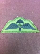 RAF Para Wings (subdued)