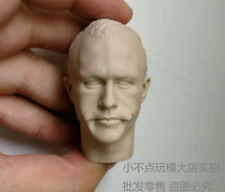 Free Shipping 1/6 scale Custom Head Sculpt Creg 5.0 Joker Heath Ledger unpainted