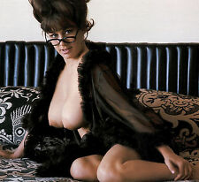 1960s PinUp Busty Nude Fran Gerard DD Black negligee & glasses  8 x 8 Photograph
