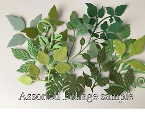 Paper Foliage and Leaves Assorted Variety Packs
