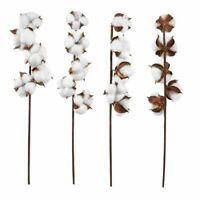 4-Pack Cotton Bolls Stem Naturally Dried Cotton Artificial Rustic Home Decor