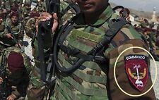 KANDAHAR TALIZOMBIE© WHACKER AFGHAN NATIONAL ARMY ANA COMMANDO SHOULDER INSIGNIA