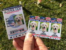 Service Dog Holographic Id Card + Keychain Collar TAG + Online Registration ADA