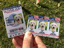 Service Dog Holographic Id Card + Keychain Collar TAG + Online Registration ADA