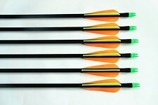 "24)30"" GPP Fiberglass Practice/hunting Arrows W/changeable Point for All bows"