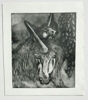 AUSTRALIAN LINOCUT - UNICORNS - VIRGINIA FOWLER 1970s   P142