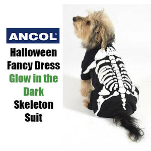 Ancol Dog Halloween Costume Fancy Dress Glow Skull Skeleton Suit Party Puppy