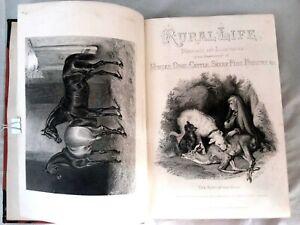 RURAL LIFE. JOHN SHERER, TWO VOLUME SET. C.1870.HORSES DOGS CATTLE SHEEP PIGS