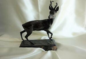 *D5HF1* Bronzefigur Bronze Rehbock Fritz Diller um 1920