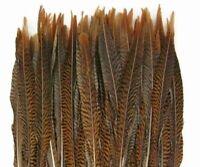 """10 Pcs GOLDEN PHEASANT Natural Feather 20-30"""" Craft/Pad/Halloween/Mardi Gras"""