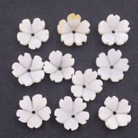 Lots 10 PCS 10mm White Shell Fives petal Flower Mother of Pearl Loose Beads