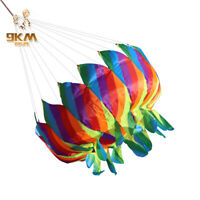 Rainbow Kite Tail Windsock Line Laundry Flower basket Tailed Kite Flying Outdoor
