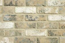 Handform-Verblender WDF BH1097 beige-grau-weiß Klinker Vormauersteine