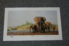 David Shepherd Evening in Africa Limited Edition Print Signed Never Framed