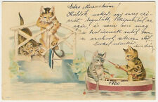 Cats, Cats Fishing in a Boat, Funny Old Litho Postcard 1900