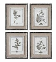 Wall Decor Prints Framed Art Floral Leaves Contemporary Flowers Set 4