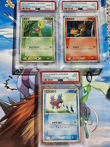 Treecko Torchic Mudkip PSA 10/9 Magma Vs Aqua 2003 Pokemon Card Game