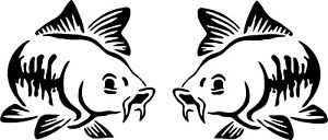 Carp fish decals stickers Van, Car, fishing box  you get x2 stickers & and right
