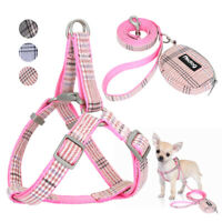 Step in Nylon Dog Harness Adjustable Puppy Harness with Leash and Rubbish Bag