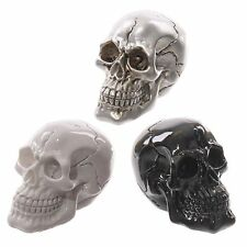 Juego de 3 pequeño cráneo decoración Calaveras Blanco Negro Plata Ornamento Esqueleto