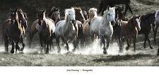 HORSE ART PRINT - Renegades by Lisa Dearing 36x17 Western Horses Running Poster