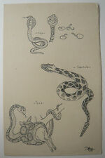 Beau DESSIN Ancien Étude Naja Boa Crotale Serpent Reptile ART DÉCO 1941 #C