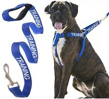 Dog Harness Non Pull Color Coded Blue TRAINING 2 4 6 Foot Leash Front Back Clip