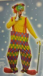 ADULT RAINBOW CLOWN CIRCUS FANCY DRESS OUTFIT/COSTUME AND MULTI COLOURED WIG