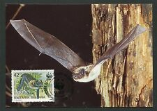 BULGARIA MK WWF ANIMALS BAT FLEDERMAUS MAXIMUMKARTE MAXIMUM CARD MC CM d4434