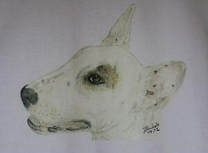 English Bull Terrier T-Shirt Original drawn designs sizes 3-6 mth to XXL