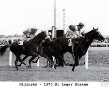 Nijinsky - 1970 St Leger Stakes,  8x10  B&W Photo