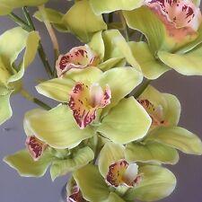 Artificial Green Cymbidium Orchid Stem ~ Artificial Silk Flowers ~ Length 83cm