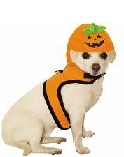 Jack A Lantern Pet Cute Halloween Pumpkin Cat Dog Costume