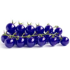 20PCS Purple Cherry Tomato Seeds Organic Heirloom Fruit Vegetable Plant Garden