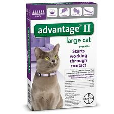 New listing 6 Month Advantage Ii Flea Control Large Cat (for cats over 9 lbs) Purple
