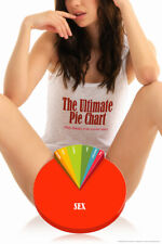 The Ultimate Pie Chart Daily Thoughts Of Average Male Funny Poster 12x18 inch