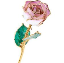24K Yellow Gold Dipped Lacquered Rose Picasso Light Pink Real Long Stem Rose