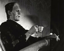 MOVIE POSTER Even Monsters Need A Break Frankenstein Smoke cigarette 28x22 Print