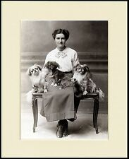 TIBETAN SPANIEL LADY AND HER DOGS LOVELY DOG PRINT MOUNTED READY TO FRAME