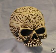 Celtic Skull ~~Celtic Knot Work and Designs ~Interior Compartment ~Great Detail~