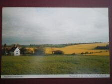 POSTCARD SUFFOLK PEASENHALL - RAPE FIELDS