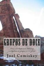 Grupos de Doce : Como Movilizar a Los Lideres y Multiplicar Los Grupos en Su...