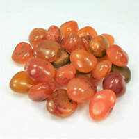 Bulk Wholesale Lot 1 LB - Red Carnelian Agate - One Pound Tumbled Polished