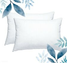 (2) Queen Feather Pillows - Handmade In USA! 100% Genuine - EXTRA FIRM