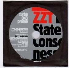 (FF118) ZZT, Lower State of Consciousness (Tiga & Zombie Nation) - 2007 DJ CD