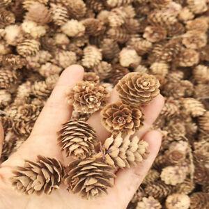 50PCS Natural Pine Cones Dried Flowers Christmas Garland Wreath Wedding Decor