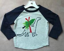 Gymboree Boys Size 2T Dino Tree Shirt Holiday Grey Navy